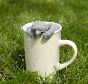 water splashing on tiny sloth infuser